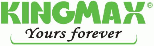 Логотип компании Kingmax
