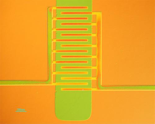 lynnloo_plastic_transistor