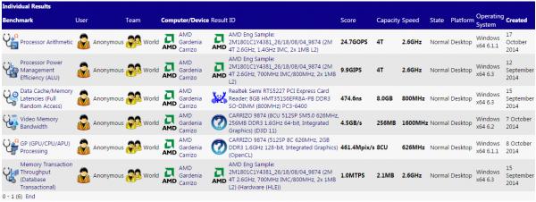 AMD, Gardenia 9874, Carrizo